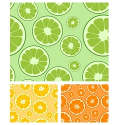 citrus seamless background vector image vector image