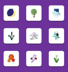 Flat icon nature set of overcast floral cattail vector