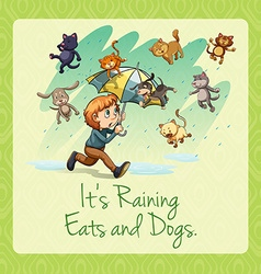 Its raining cats and dogs idiom vector image vector image