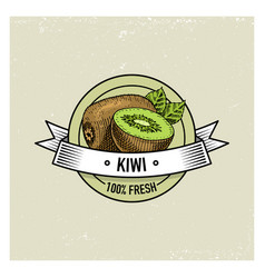 kiwi vintage hand drawn fresh fruits background vector image