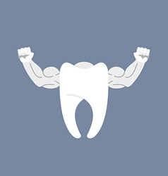 Strong healthy tooth White clean tooth with big vector image vector image