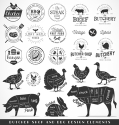 Butcher shop and fast food design elements vector