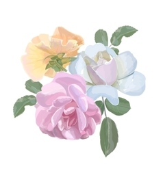 Bouquet of watercolor roses for invitation or vector