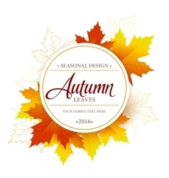 Autumn seasonal banner design Fall leaf vector image vector image