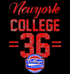 college new york typography t-shirt graphics vector image vector image