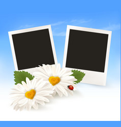 Happy valentines day background two daisies and vector