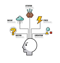 Infographic related to the human mind image vector