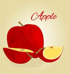 Red apple fruit healthy lifestyle vector image vector image