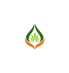 cannabis leaf medical logo vector image