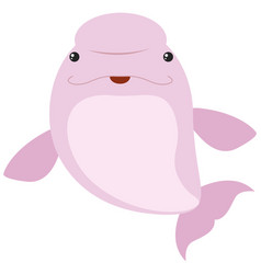 pink beluga whale on white background vector image vector image