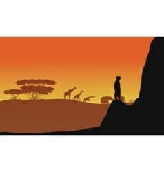 Silhouette of animals africa vector