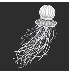 Spineless stripping blubber or jellies vector image vector image