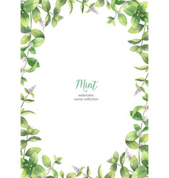 Watercolor frame of mint branches isolated vector