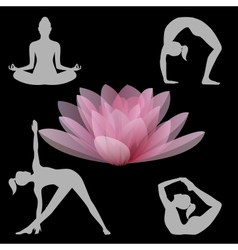 Lotus flower and yoga positions vector
