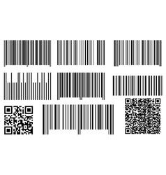 Bar codes and qr codes vector