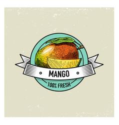 Mango vintage hand drawn fresh fruits background vector