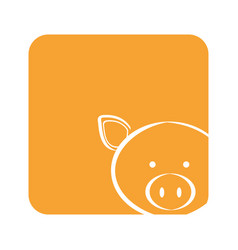 Orange square picture of pig animal vector