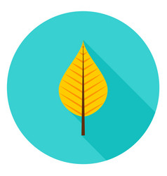 Autumn leaf circle icon vector