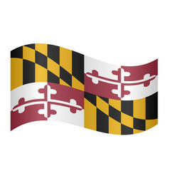 flag of maryland waving on white background vector image
