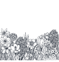 Floral backgrounds with hand drawn spring flowers vector