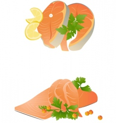 fresh salmon steak vector image vector image