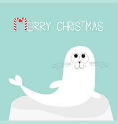 Merry christmas candy cane text white sea lion vector