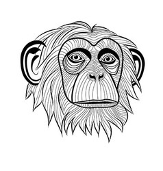 Monkey chimpanzee ape head animal vector image vector image