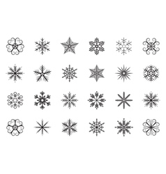 Snowflakes set on white background isolated vector