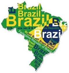Map of brazil 1 vector