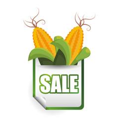 Corn sale shop market label vector