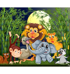 A rainforest with animals strolling in the middle vector