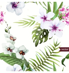 Watercolor hibiscus orchid white palm vector