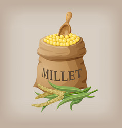 an image of raw yellow millets in a bag vector image