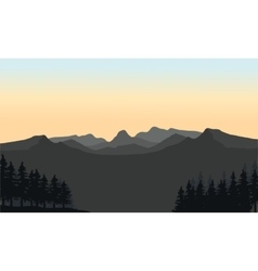 Gray mountain and spruce silhouette vector
