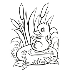 Little cute duckling swims on the pond and smiles vector image