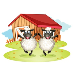 Two black sheeps with a barn at the back vector