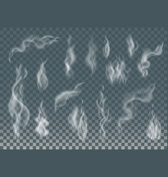 Realistic cigarette smoke waves or steam on vector