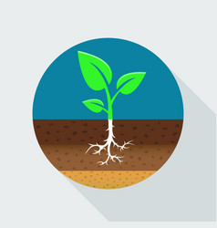 Growing sprout flat icon vector