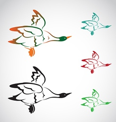 Image of an flying wild duck vector