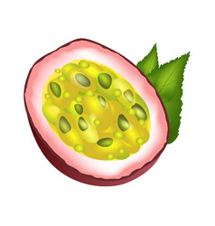 Juicy passion fruit cut part with green leaves vector