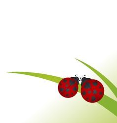 Ladybug on grass vector image