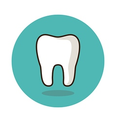 Tooth flat icon Medical vector image