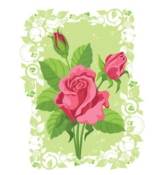 Roses card vector
