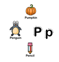 Alphabet letter p-pumpkin penguin pencil vector