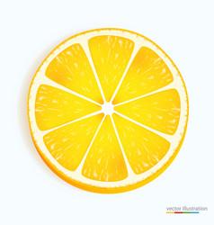 Fresh lemon slice icon on a white vector