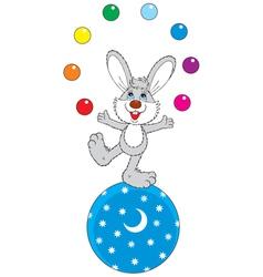 circus hare juggler vector image
