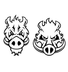 Angry wild boar heads character vector image