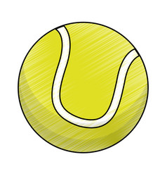 drawing tennis ball equipment vector image