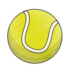 drawing tennis ball equipment vector image