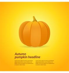 pumpkin on oragne background vector image vector image